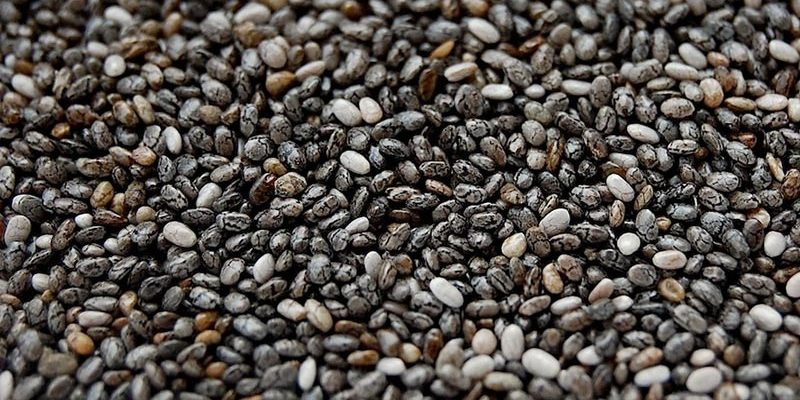 Wholesale Seeds and Grains Chia