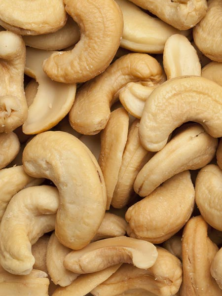 Cashew Nuts Wholesale